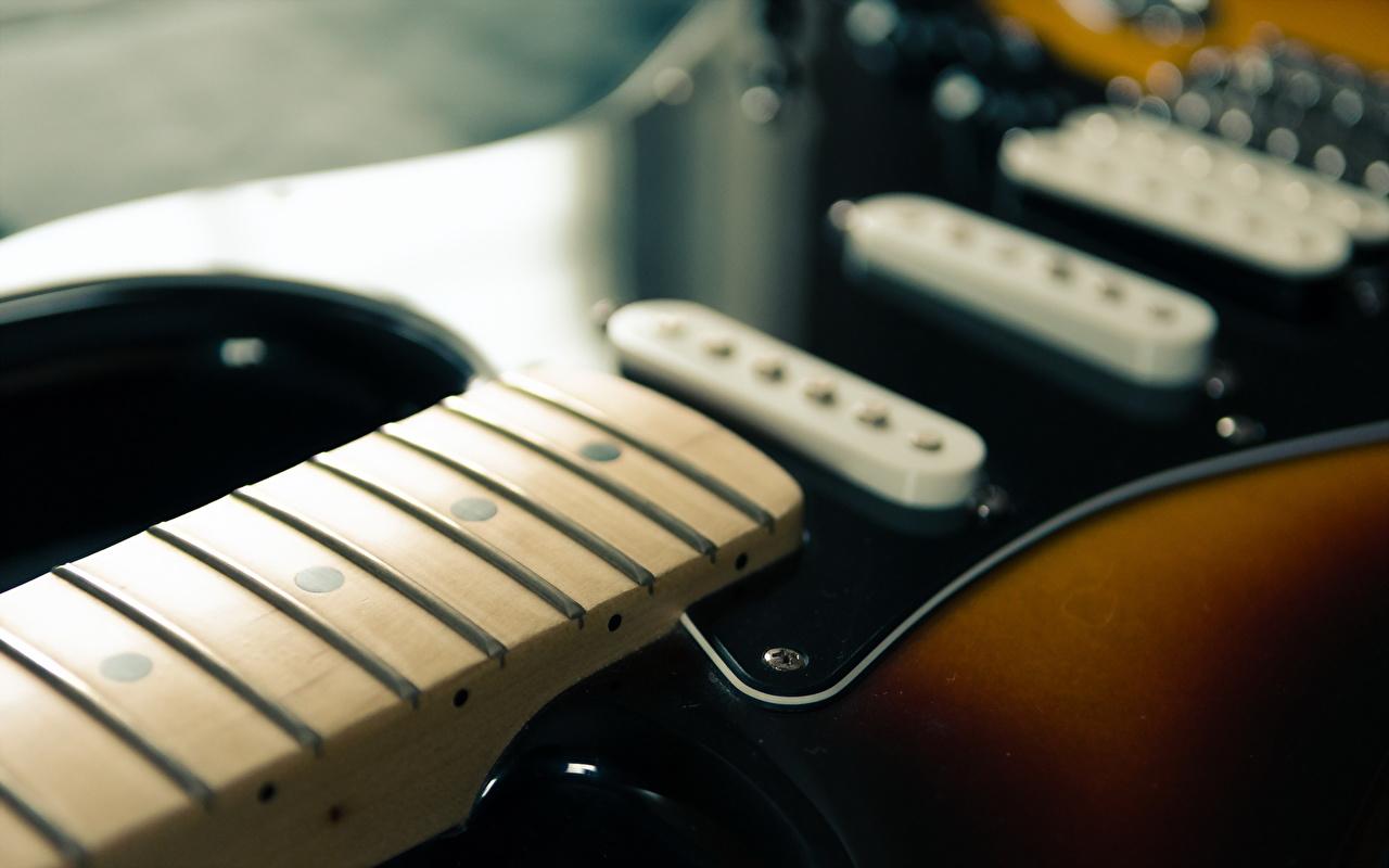 Фотографии гитары Крупным планом Гитара с гитарой вблизи