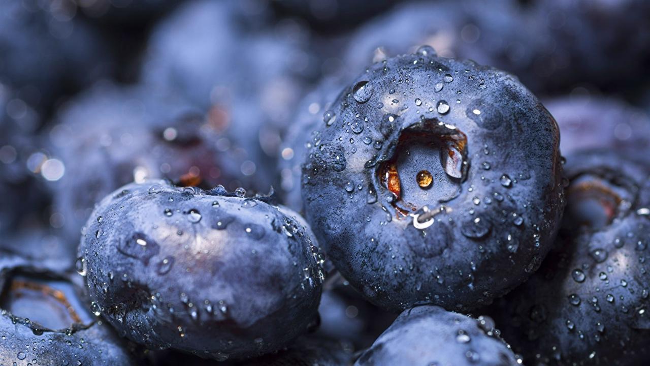 Картинки Черника капельки Пища Ягоды Крупным планом капля Капли капель Еда Продукты питания вблизи