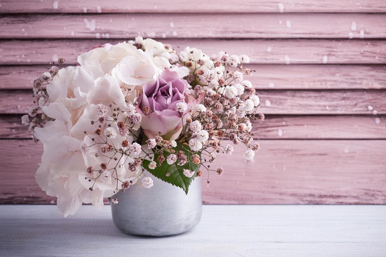 Фото букет цветок Гортензия вазе Букеты Цветы Ваза вазы