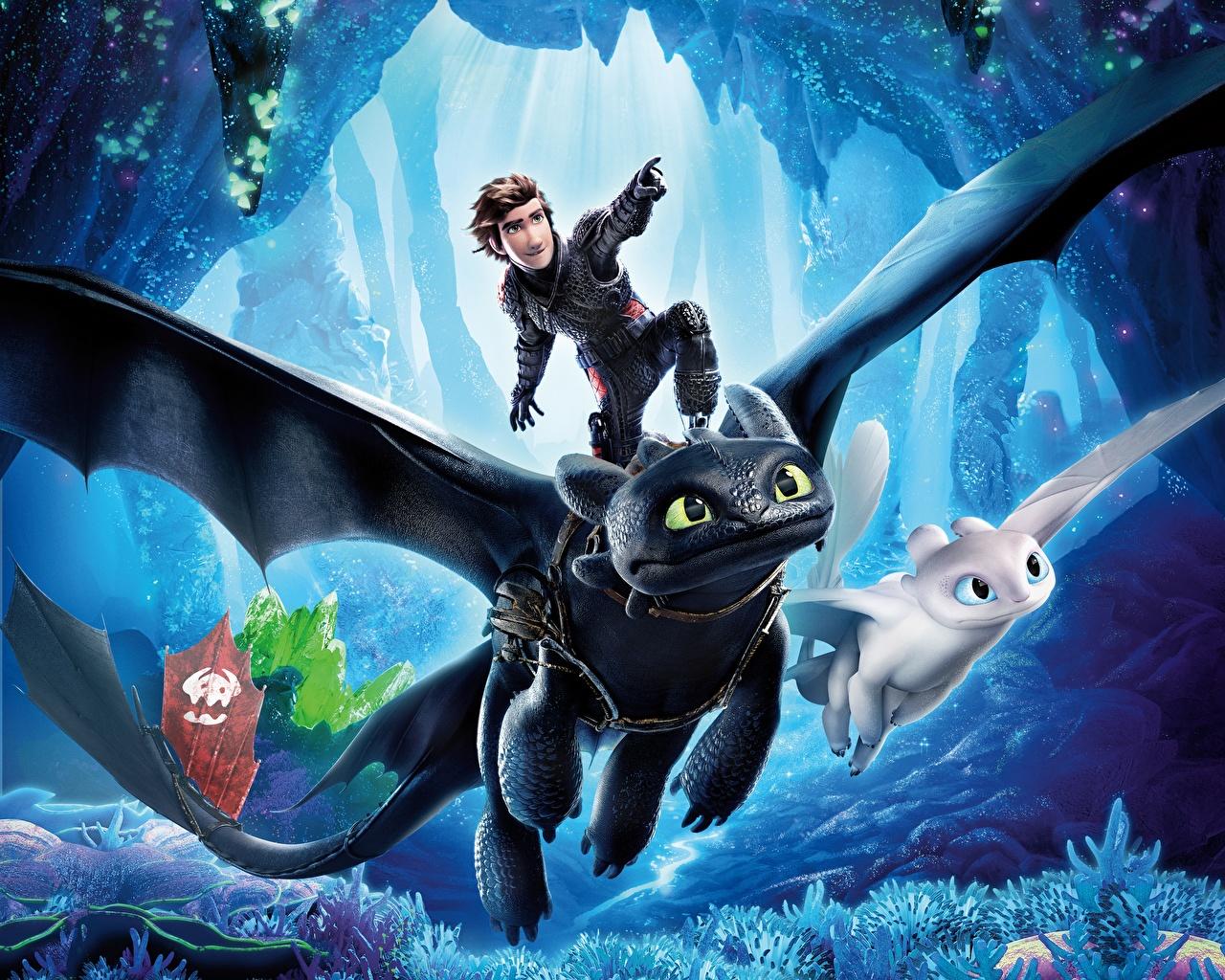 Фото Драконы Юноша How to Train Your Dragon 3 The Hidden World Мультики летящий Парни Мультфильмы Полет