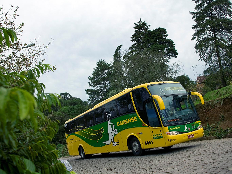 Фотография Автобус 2000-11 Marcopolo Scania K124 Paradiso G6 1200 4×2 Машины Сканиа Авто Автомобили