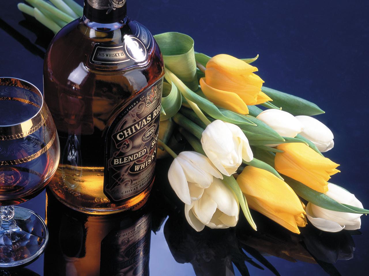 Картинки Алкогольные напитки Виски Тюльпаны Цветы Бутылка бутылки