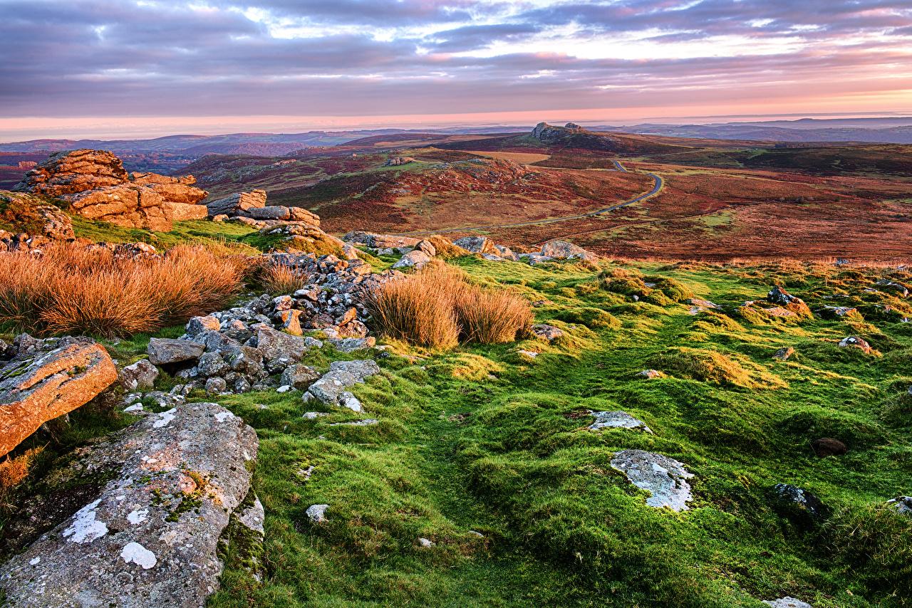 Фотография Англия Teignbridge Природа Холмы Пейзаж траве Камень холм холмов Камни Трава