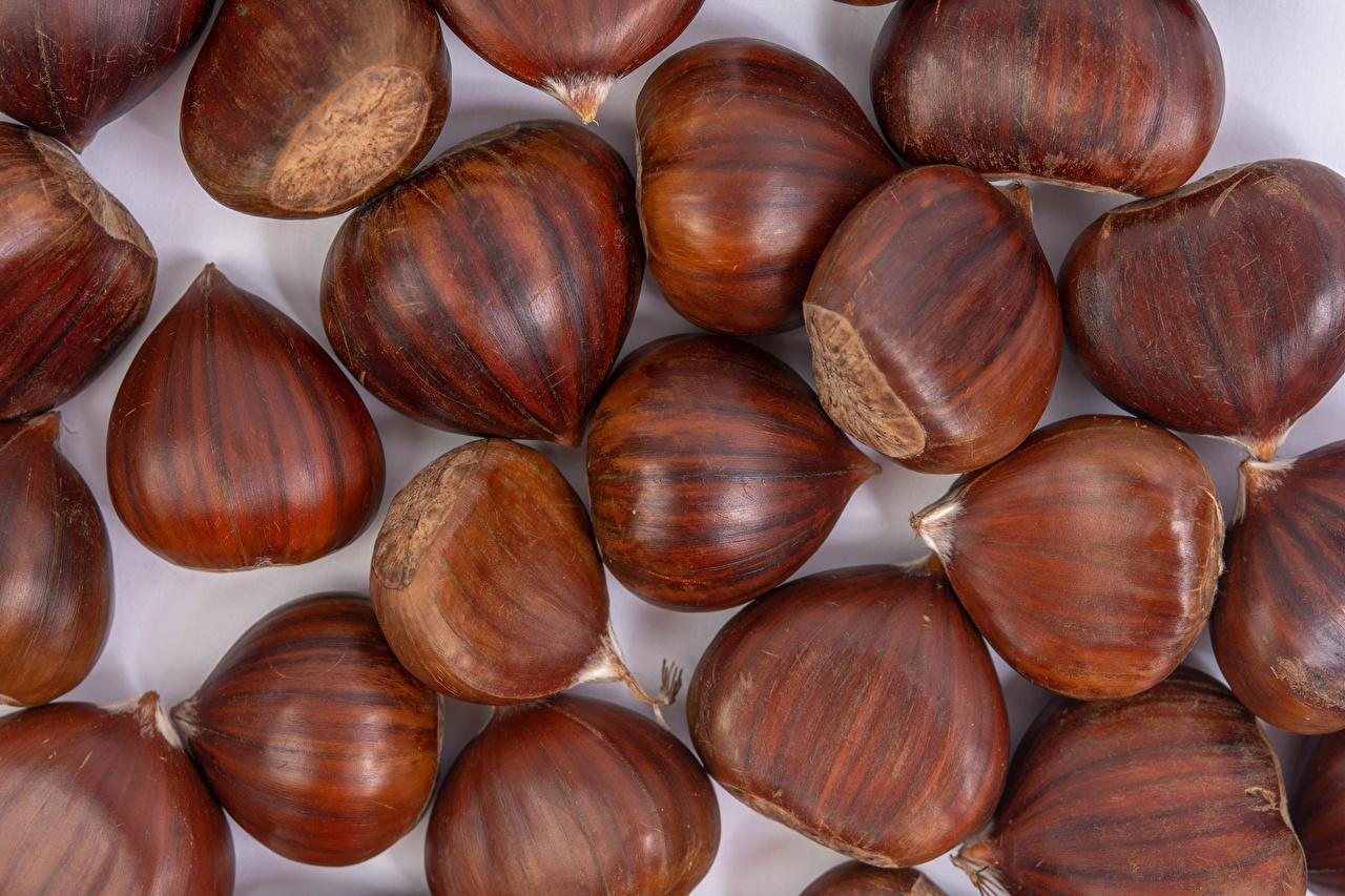 Фотографии Фундук Еда Орехи вблизи Лесной орех Пища Продукты питания Крупным планом