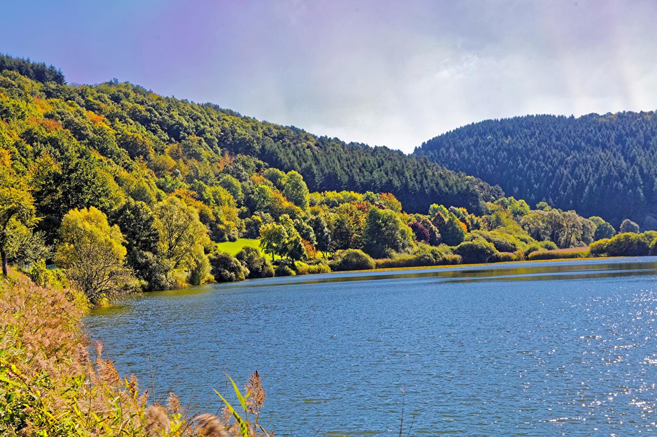 Фото Германия Meerfelder Осень Природа Леса холмов река осенние лес холм Холмы Реки речка
