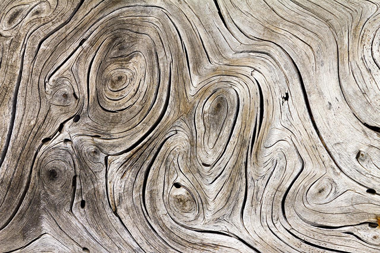 Фотографии Текстура Деревянный из дерева