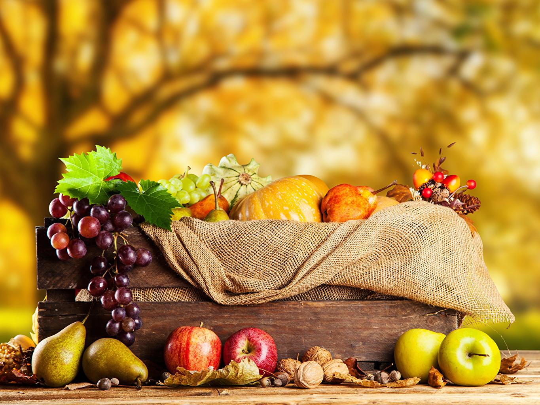 Картинки осенние Груши Яблоки Виноград Пища Орехи Осень Еда Продукты питания