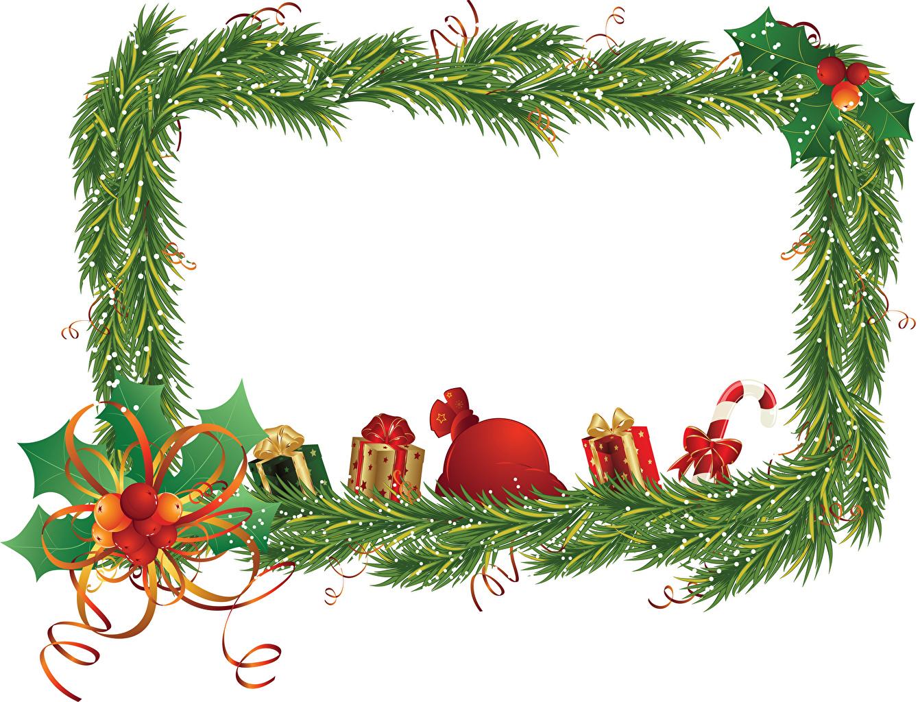 Фото Новый год Подарки бантики на ветке ленточка Шаблон поздравительной открытки Рождество подарок подарков бант ветвь ветка Ветки Лента Бантик