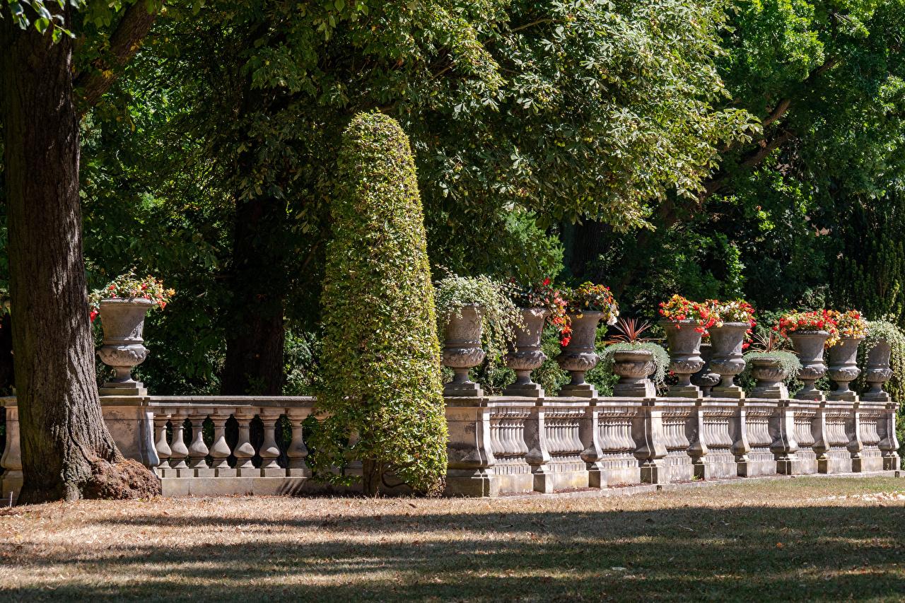 Фотография Потсдам Германия Park Sanssouci Природа парк забора Кусты дизайна Парки Забор ограда забором кустов Дизайн