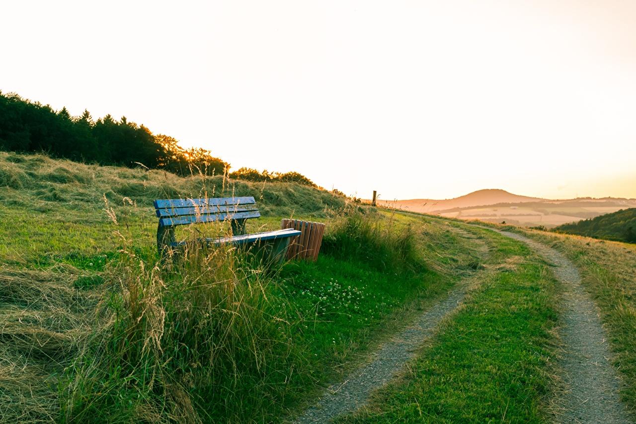 Картинка Лето Природа Дороги траве Скамейка Трава Скамья