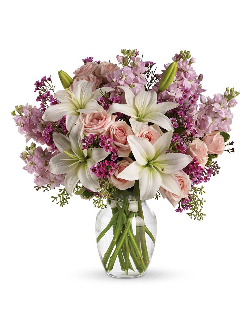 Обои Букеты Розы Лилии Цветы Маттиола Белый фон Левкой