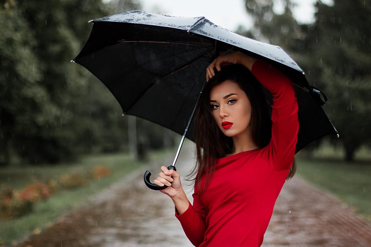 Обои для рабочего стола Брюнетка молодые женщины Дождь Зонт Взгляд брюнетки брюнеток девушка Девушки молодая женщина зонтом зонтик смотрит смотрят