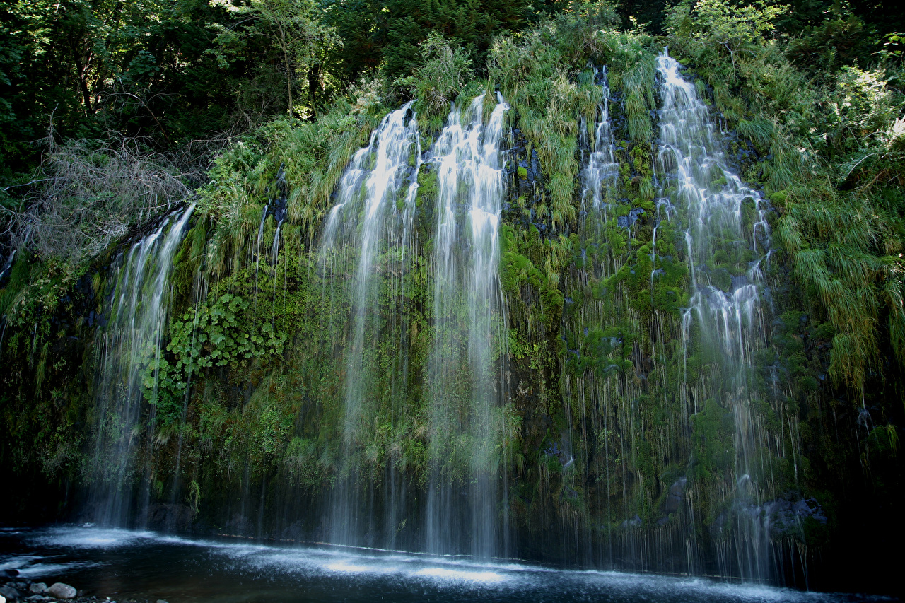 Фото калифорнии США Mossbrae falls Скала Природа Водопады мха Калифорния штаты Утес скалы скале Мох мхом