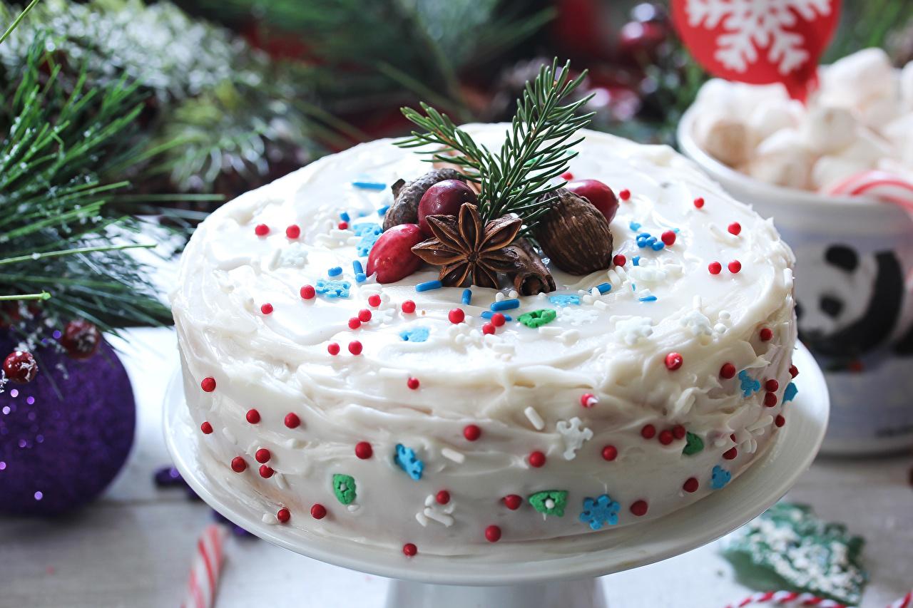 Фотография Рождество Торты Бадьян звезда аниса Продукты питания Сладости Дизайн Новый год Еда Пища