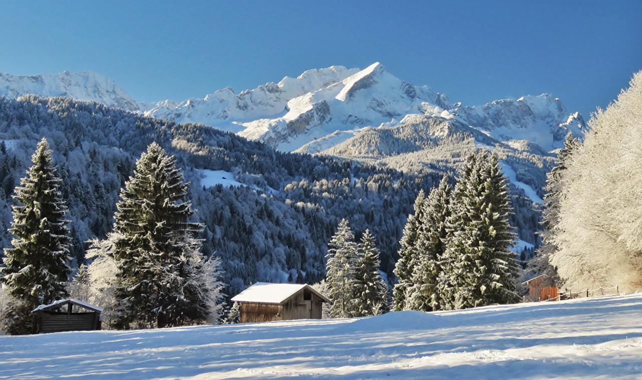 Картинки Альпы Германия Garmisch Partenkirchen Ель Зима Горы Природа Снег зимние