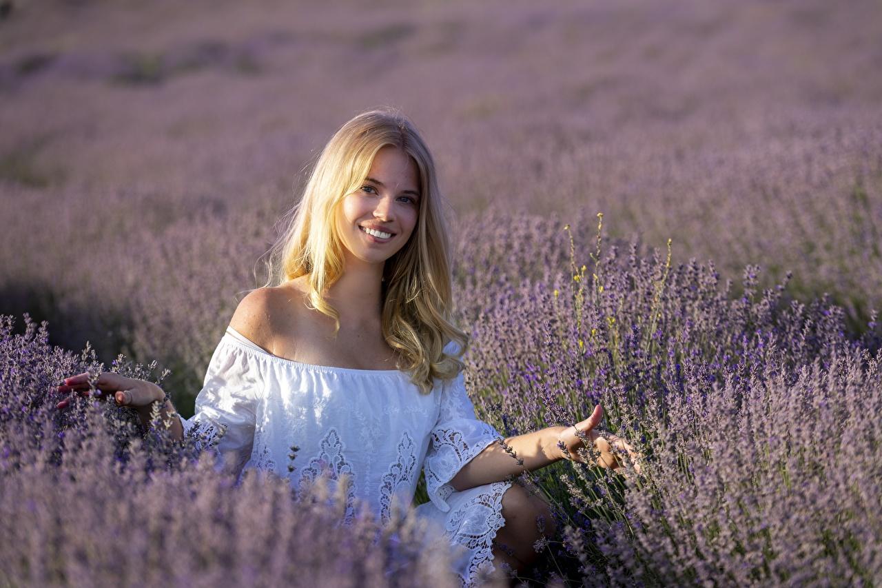 Фотографии Блондинка Улыбка молодая женщина Поля Лаванда блондинок блондинки улыбается девушка Девушки молодые женщины