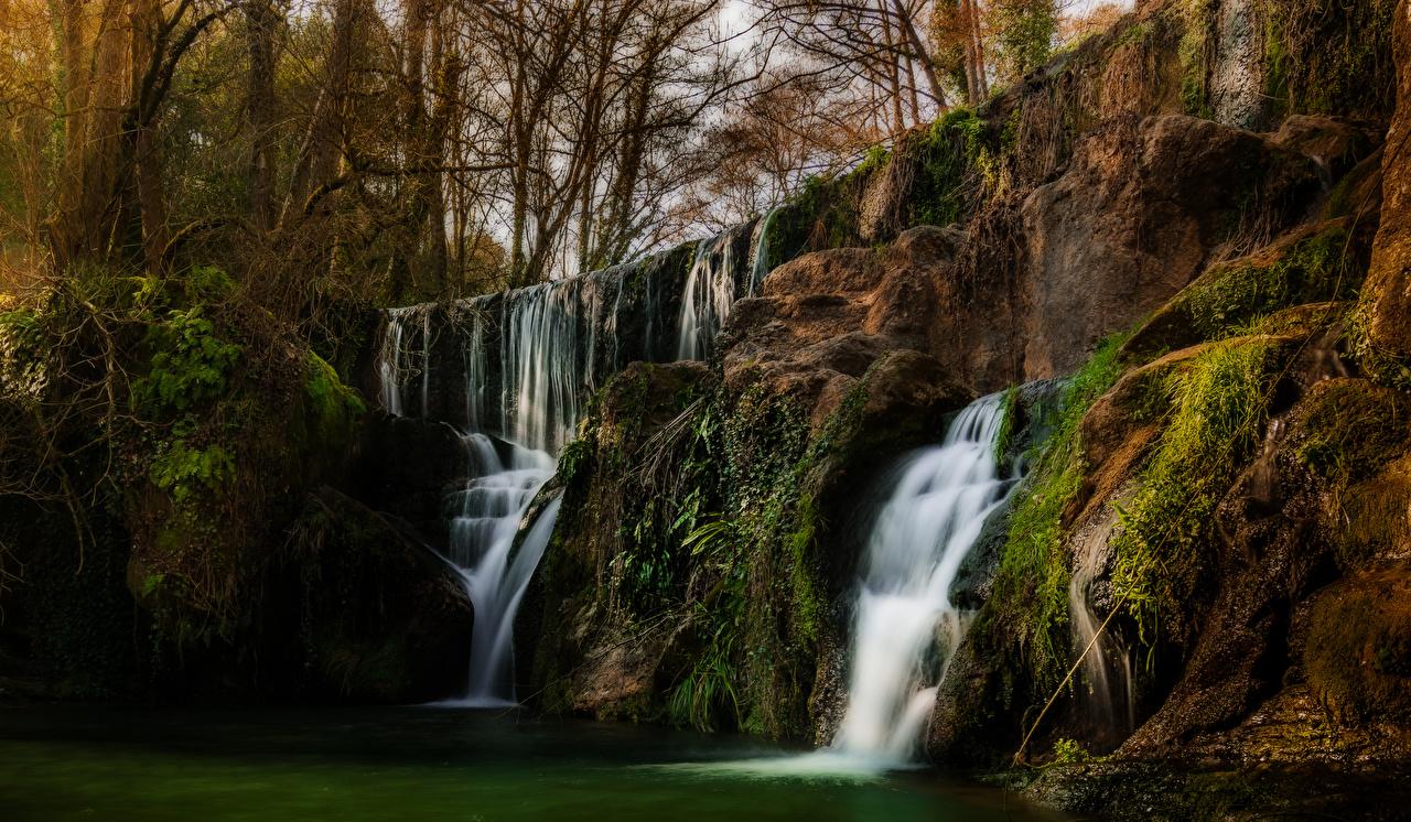 Картинки Калифорния США San Martin скалы Природа Водопады мхом деревьев калифорнии штаты Утес Скала скале Мох мха дерево дерева Деревья