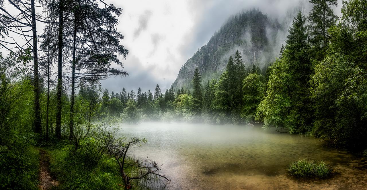 Фотографии Австрия Obertraun тумана гора Природа Озеро Деревья Туман тумане Горы дерево дерева деревьев