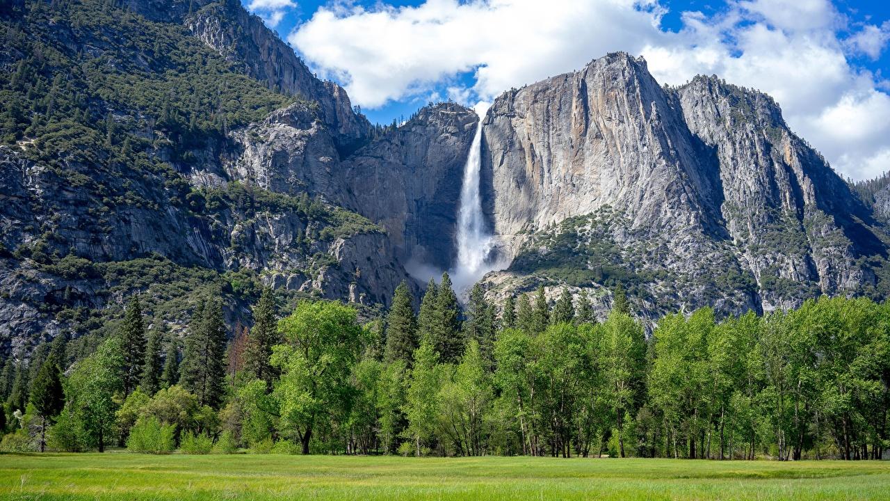 Фото Йосемити Калифорния США Горы Скала Природа Водопады Леса Парки Пейзаж Трава штаты Утес