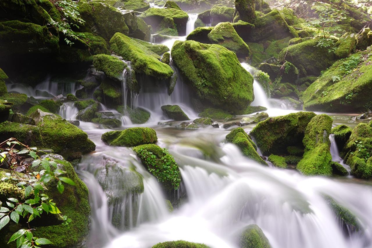 Обои для рабочего стола Природа Водопады мхом Камни Мох мха Камень