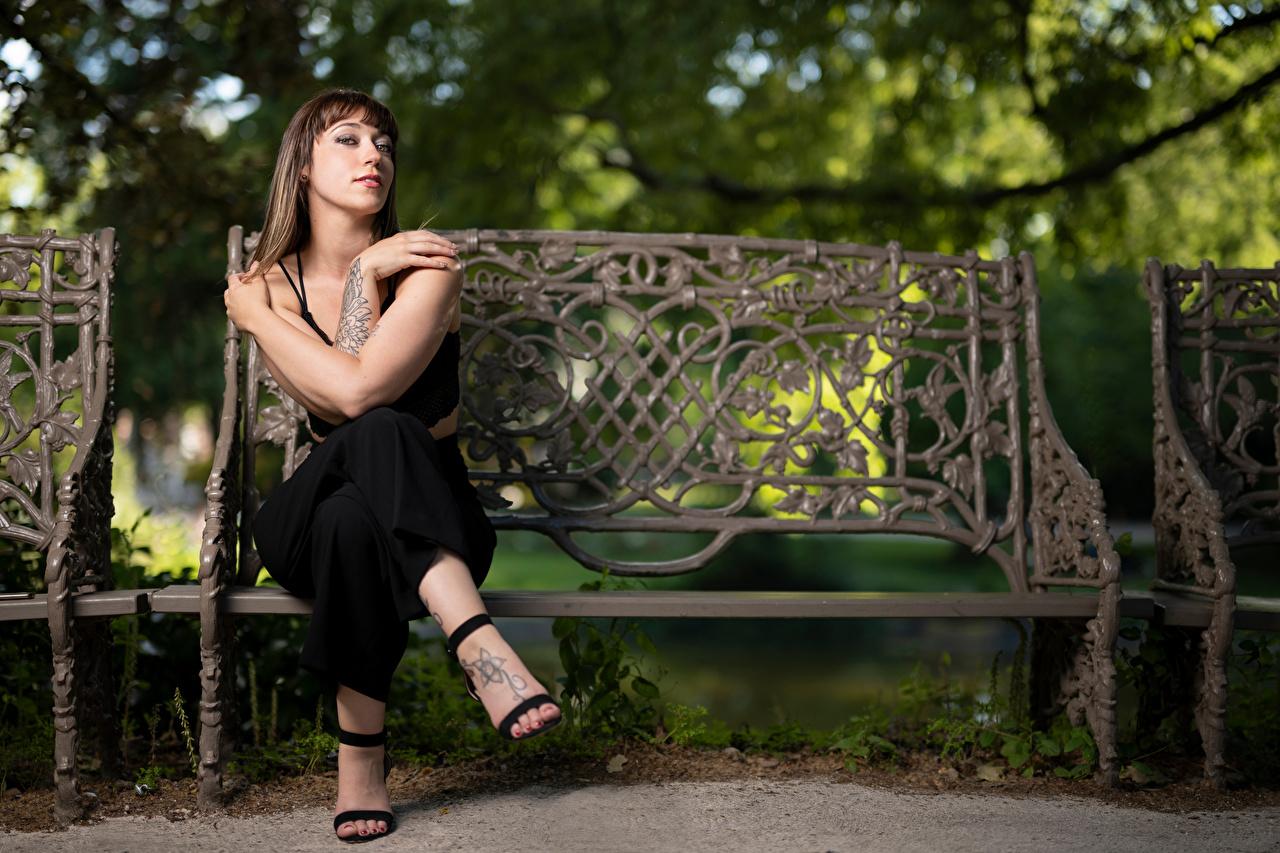 Фотографии Sarah позирует молодая женщина рука Скамья сидящие Взгляд Поза девушка Девушки молодые женщины сидя Руки Сидит Скамейка смотрит смотрят