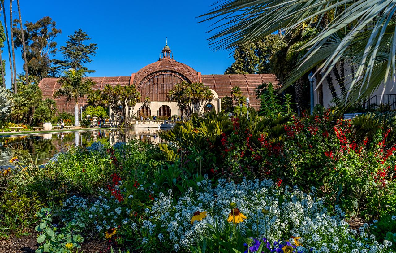 Обои Сан-Диего штаты Balboa Park Природа Пруд Парки Дома Кусты США Здания