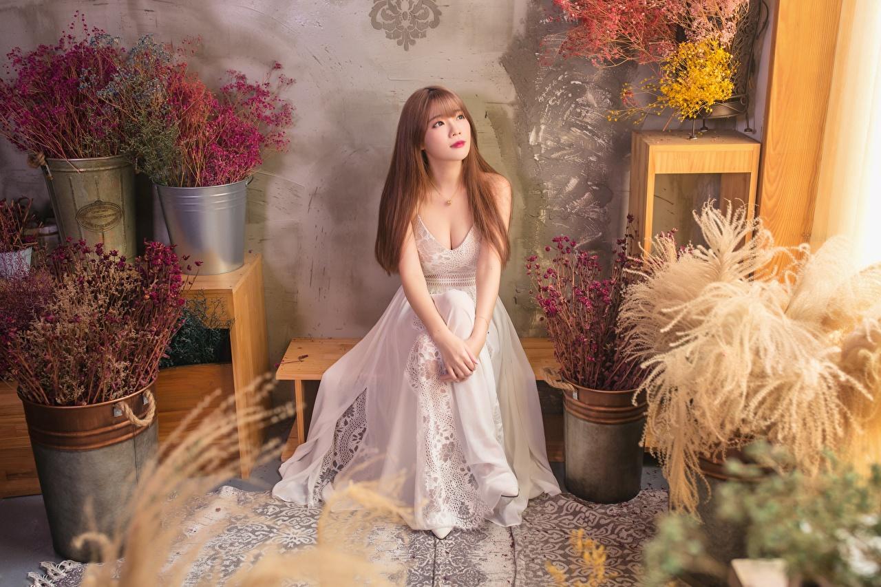 Картинки Шатенка молодые женщины Азиаты Сидит Платье шатенки девушка Девушки молодая женщина азиатка азиатки сидя сидящие платья