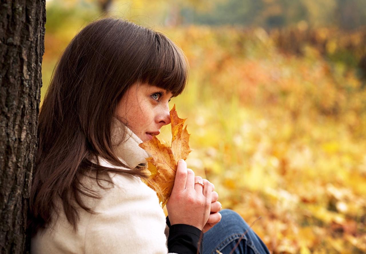 Фото лист Шатенка Размытый фон Осень Девушки рука Взгляд Листья Листва шатенки боке осенние девушка молодая женщина молодые женщины Руки смотрит смотрят