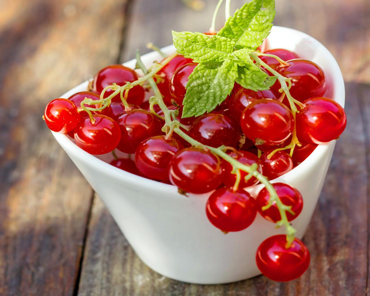 Картинки Красный Смородина Пища Ягоды Крупным планом красных красные красная Еда Продукты питания вблизи