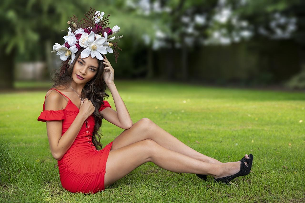 Фотографии Elle венком молодые женщины Ноги Трава сидящие смотрит платья Венок девушка Девушки молодая женщина ног сидя Сидит траве Взгляд смотрят Платье