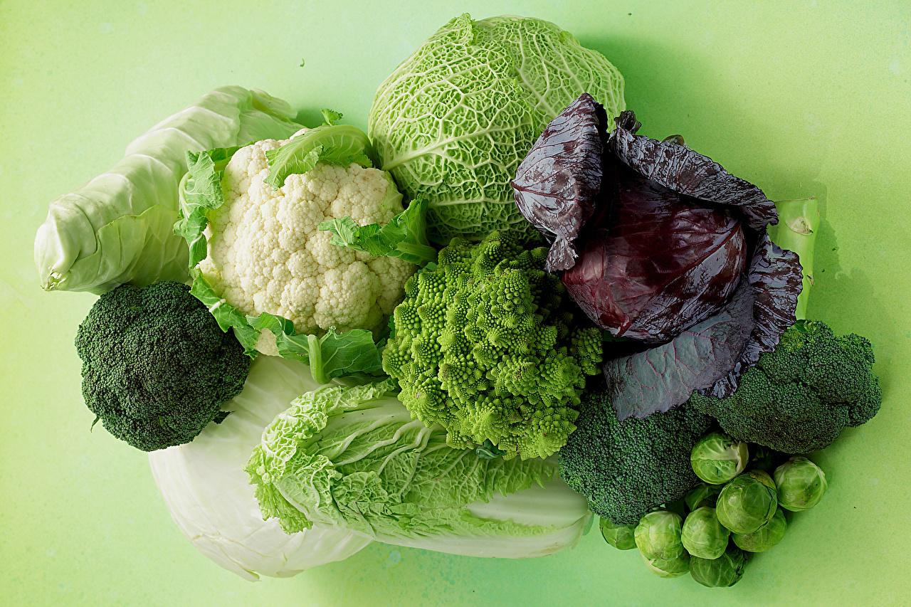 Картинка Еда Капуста Овощи Цветной фон Брокколи Пища Продукты питания