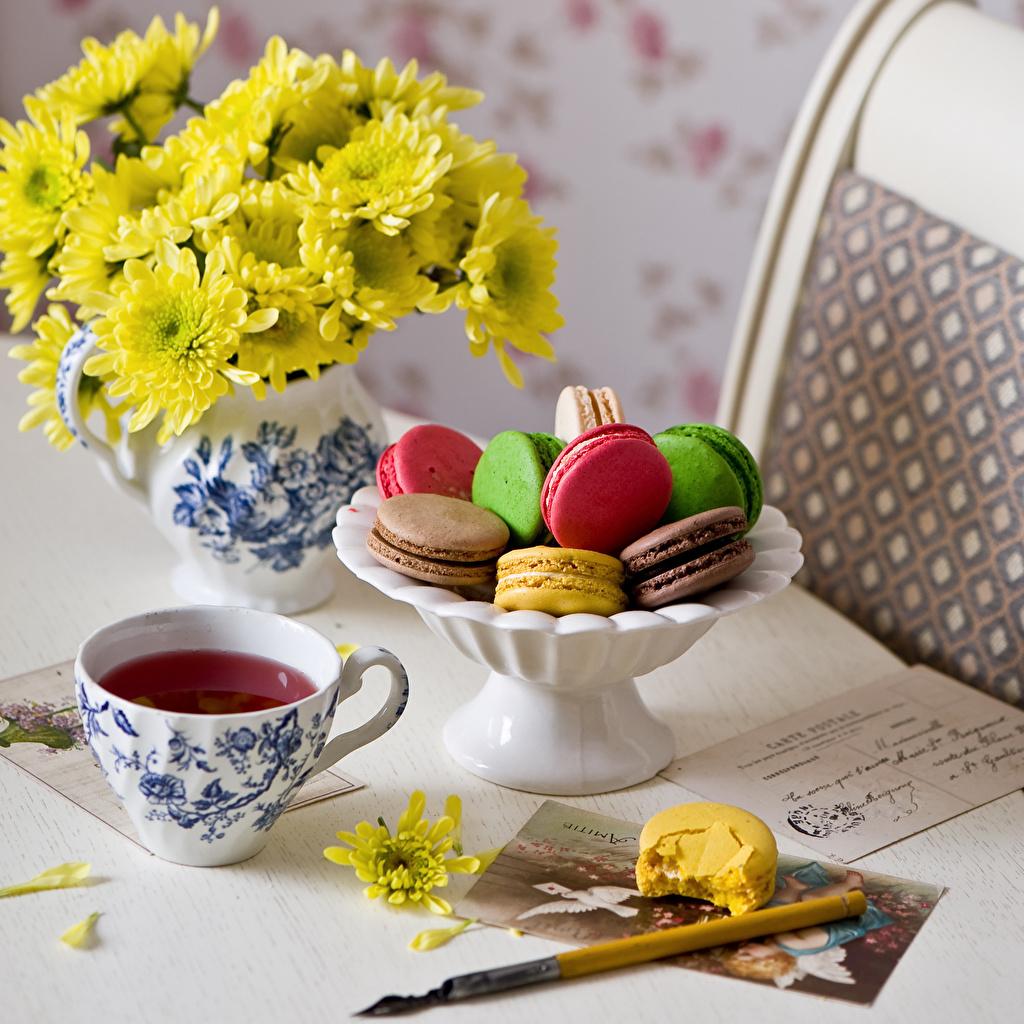 Фотографии Макарон Чай Хризантемы Еда чашке Натюрморт Пища Чашка Продукты питания