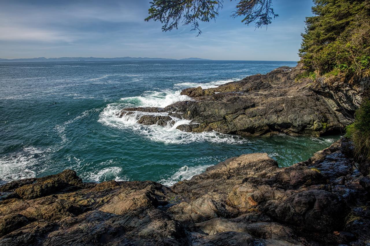 Картинки Канада Vancouver Island Parks Море Природа парк Волны Побережье Парки берег