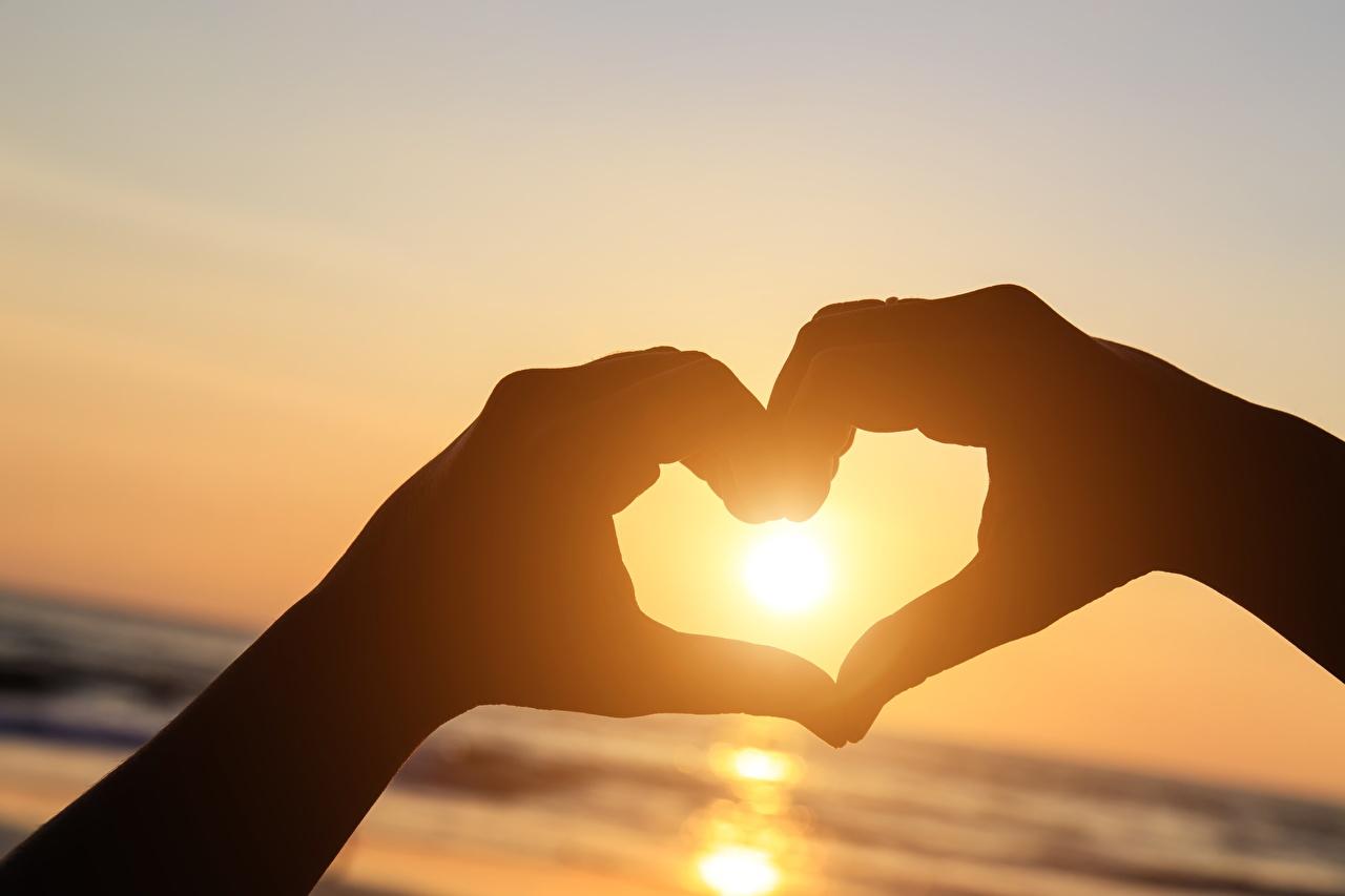 Фото Сердце Силуэт солнца Природа рука серце сердца сердечко силуэты силуэта Солнце Руки