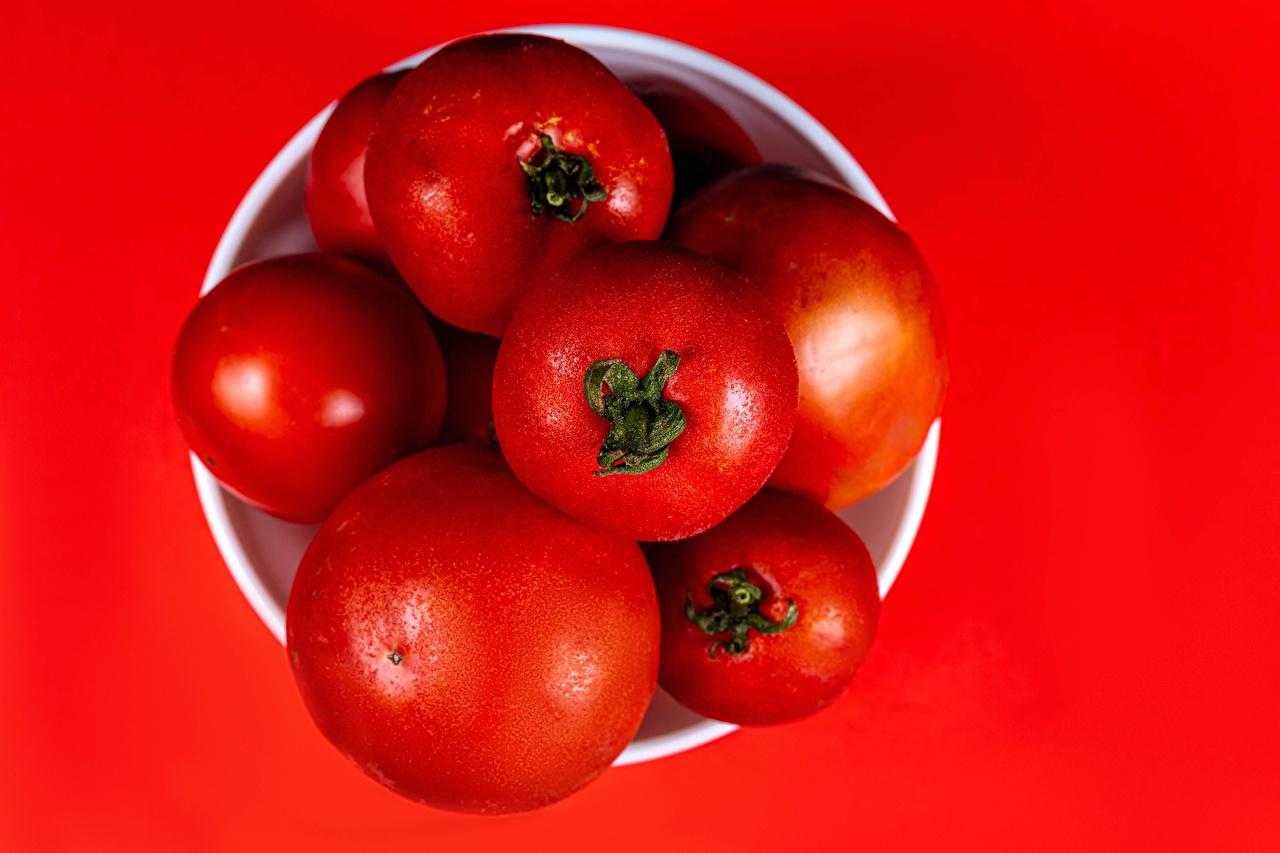 Обои для рабочего стола Томаты Продукты питания красном фоне Крупным планом Помидоры Еда Пища вблизи Красный фон