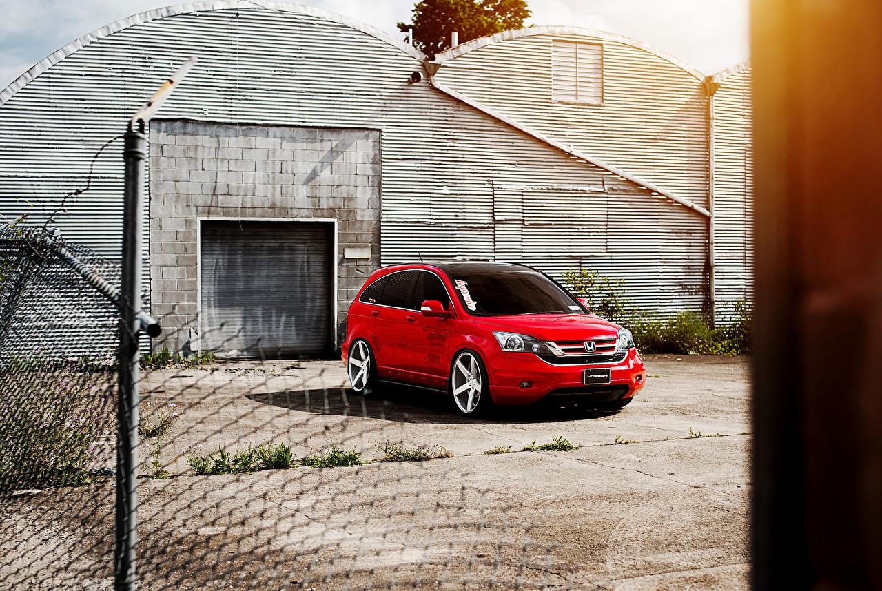 Фотография Хонда cr-v красная Автомобили Honda Красный красные красных авто машины машина автомобиль