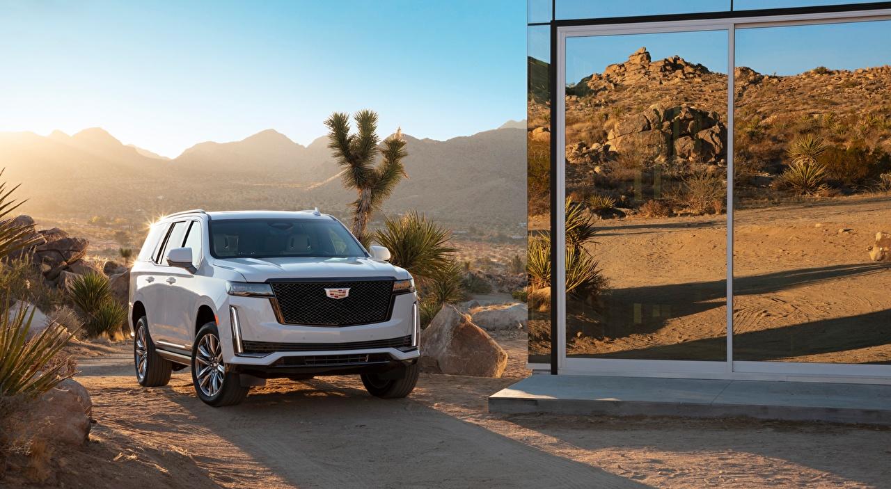 Фотографии Cadillac Внедорожник Escalade, Platinum Sport, 2020 белых Спереди Автомобили Кадиллак SUV белая белые Белый авто машины машина автомобиль