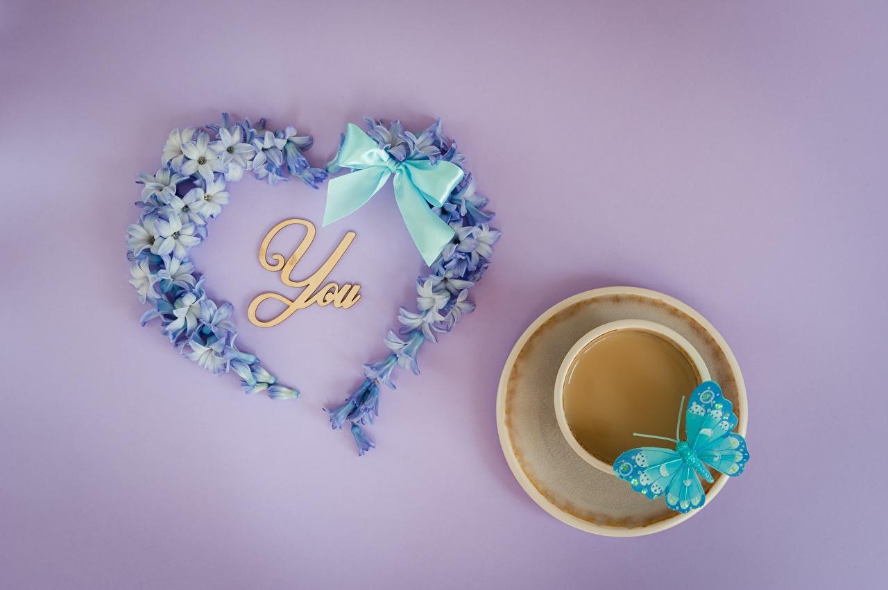 Обои День святого Валентина Бабочки сердечко Чашка Бантик День всех влюблённых Сердце