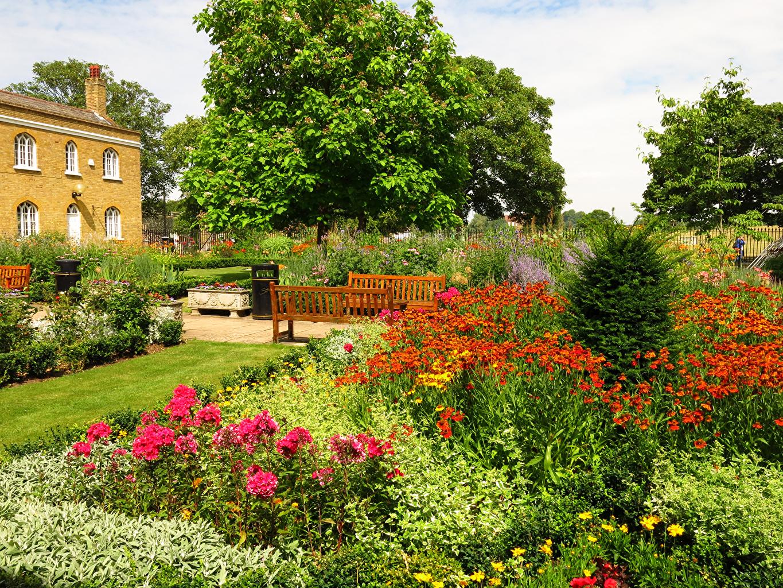 Картинка Великобритания Chumleigh Gardens Burgess Park Природа Парки Маттиола Скамейка кустов парк Левкой Скамья Кусты