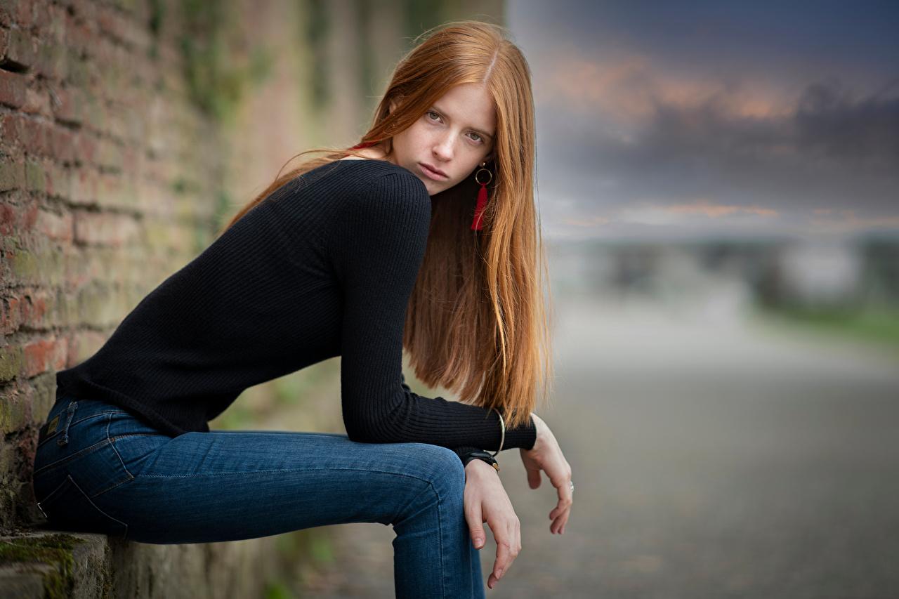 Фото Рыжая фотомодель Размытый фон позирует молодые женщины Джинсы Свитер сидящие смотрят рыжие рыжих Модель боке Поза девушка Девушки молодая женщина джинсов свитере свитера сидя Сидит Взгляд смотрит