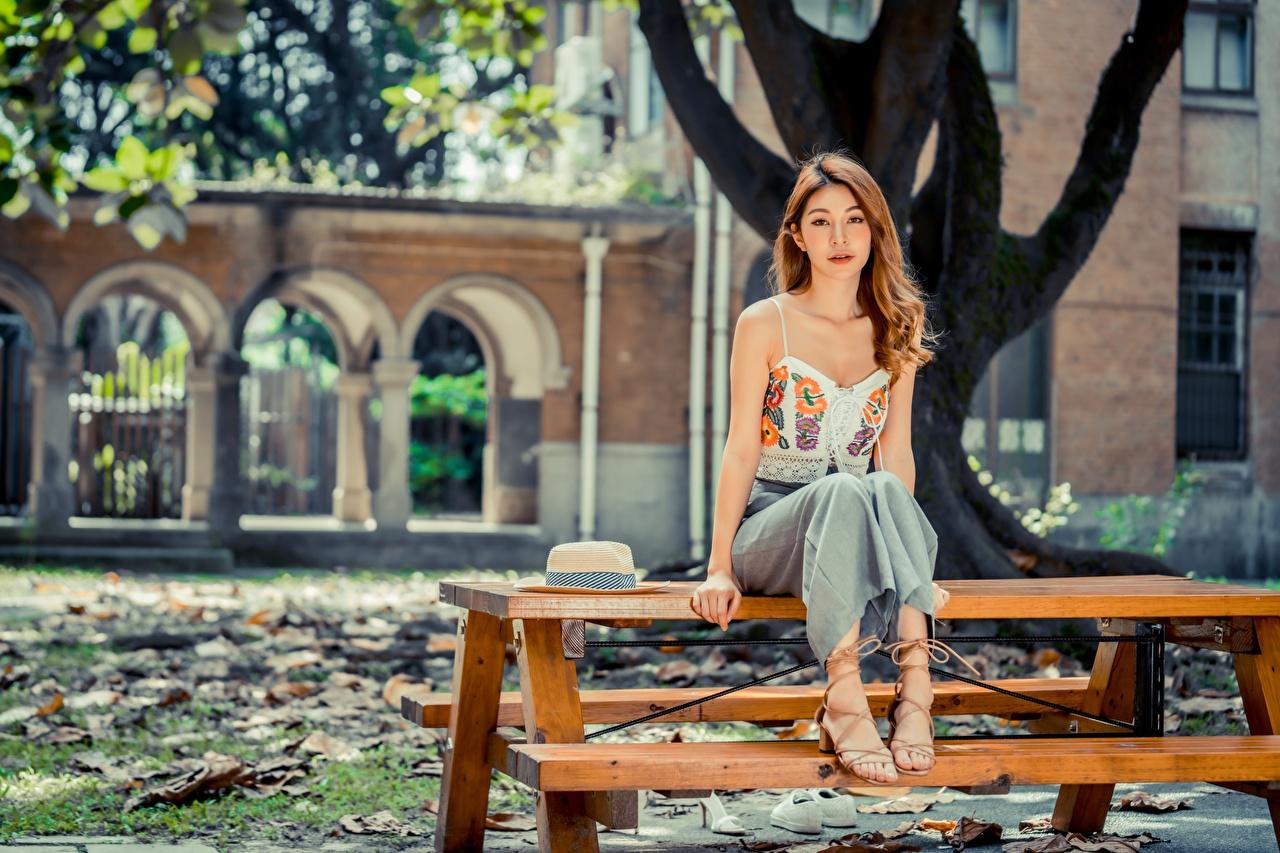 Фотографии Шатенка боке Милые девушка Азиаты Сидит столы шатенки Размытый фон милая милый Миленькие Девушки молодые женщины молодая женщина азиатка азиатки сидя Стол стола сидящие