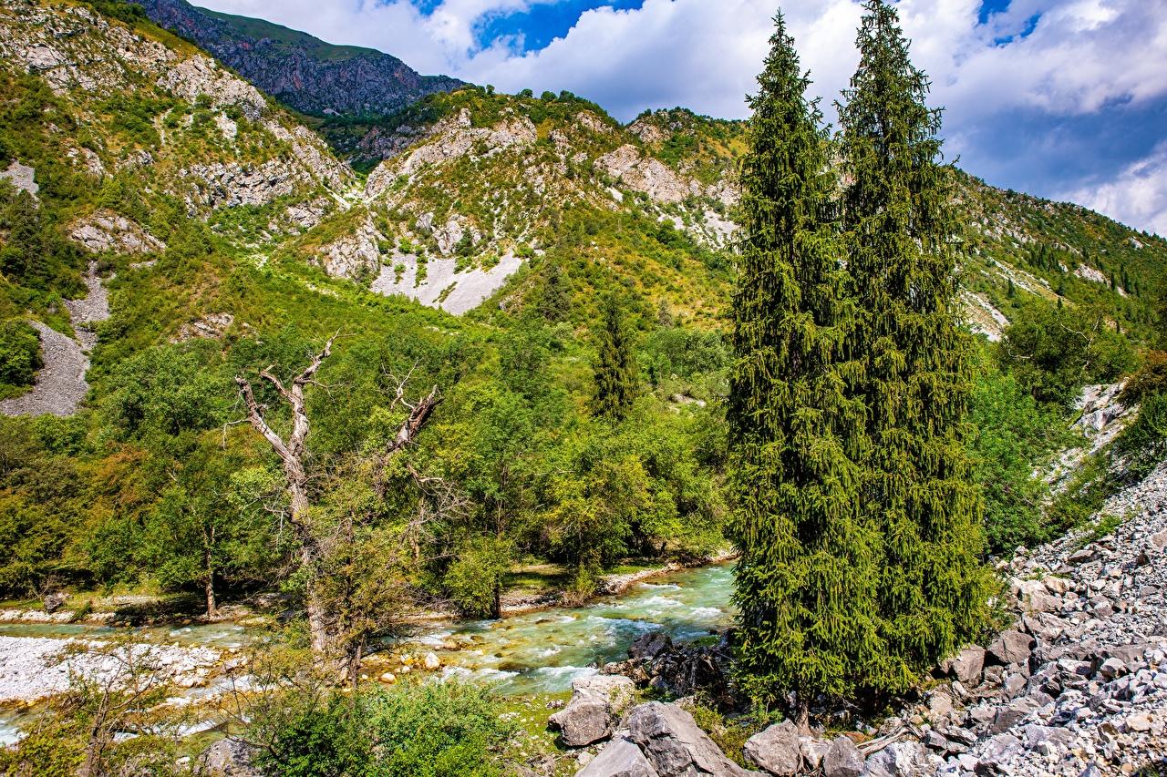 Фото Kara-Kamysh, Kyrgyzstan Горы Природа Реки Камни дерево гора река речка Камень дерева Деревья деревьев