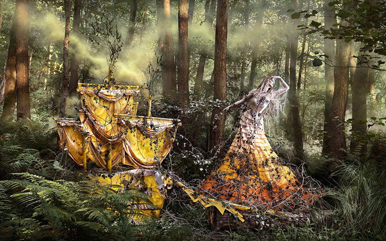 Обои для рабочего стола Kirsty Mitchell Фантастика лес Креатив Фэнтези Леса креативные оригинальные