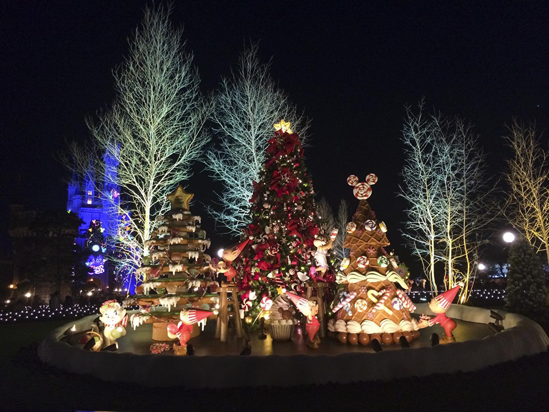 Картинки Токио Диснейленд Япония Новый год Природа Новогодняя ёлка Парки Ночные Дизайн Рождество Елка Ночь
