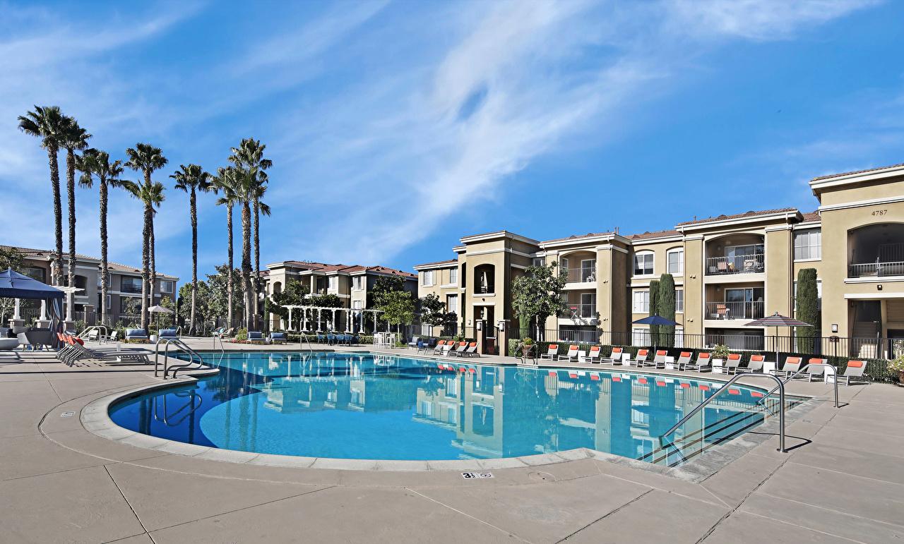 Фото Калифорния штаты Курорты Плавательный бассейн San Jose Пальмы Дома Города калифорнии США америка Бассейны пальм пальма город Здания