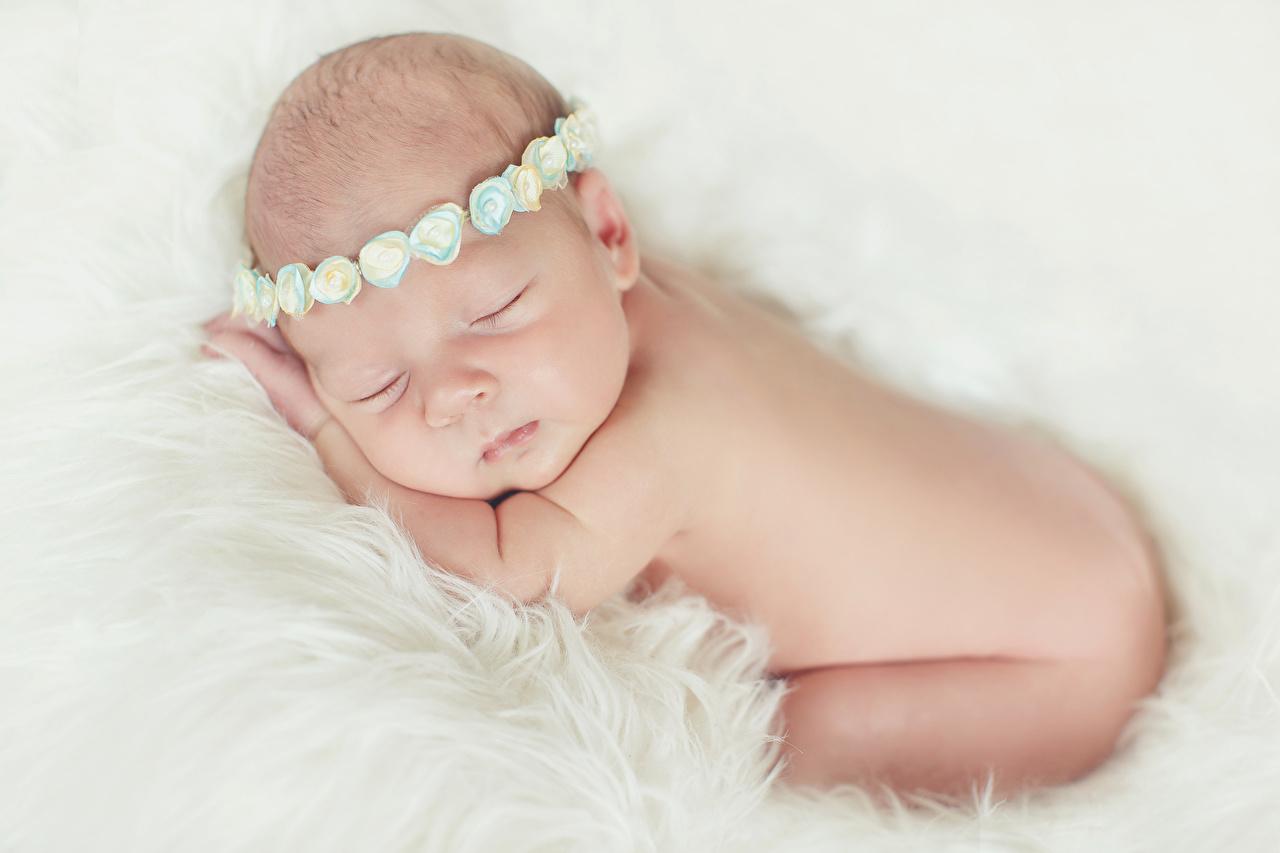 Фотографии Младенцы ребёнок сон младенца младенец грудной ребёнок Дети спят Спит спящий