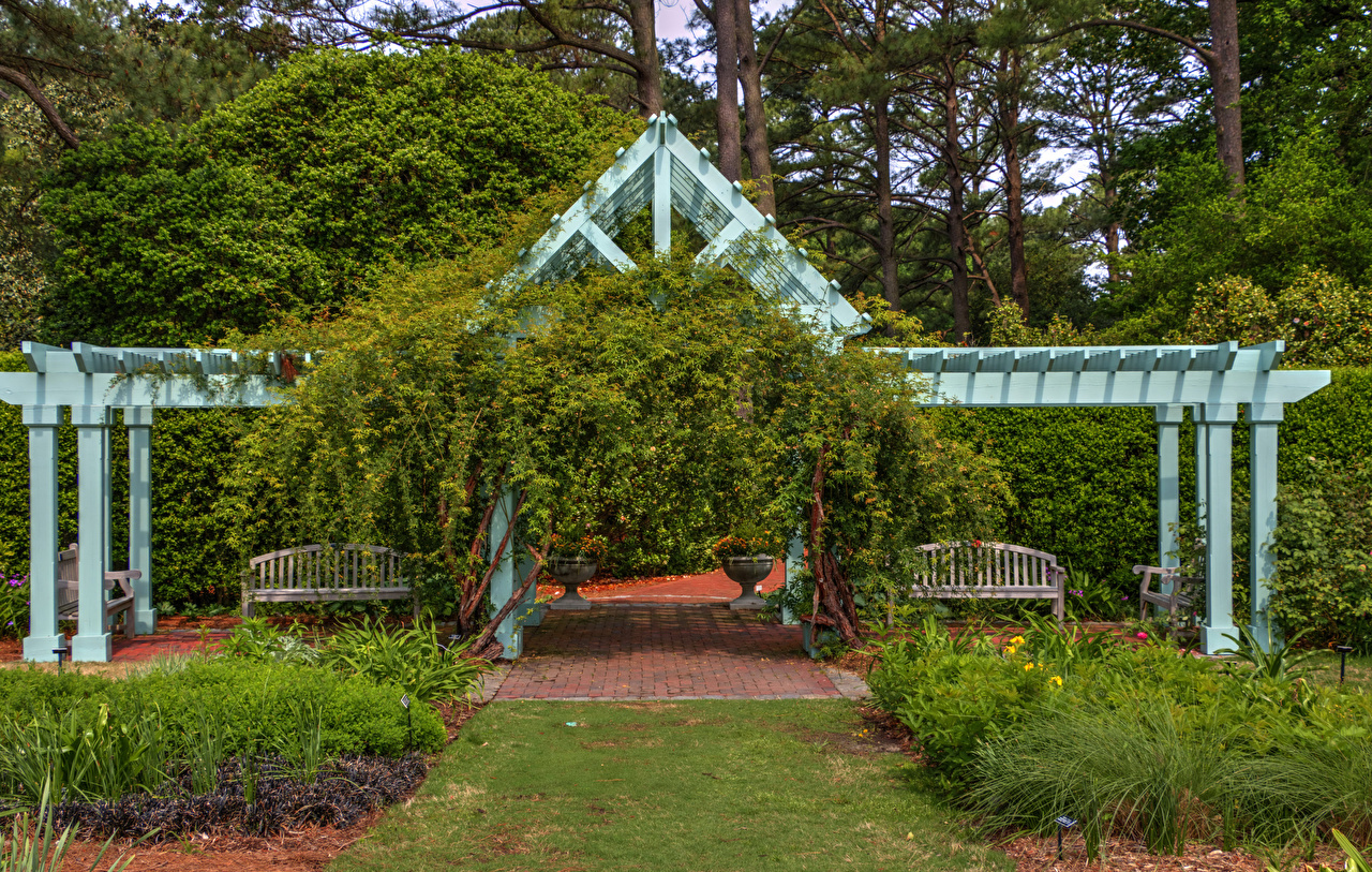 Фотографии США Norfolk Botanical Garden Virginia Природа Парки Скамейка кустов штаты Скамья Кусты