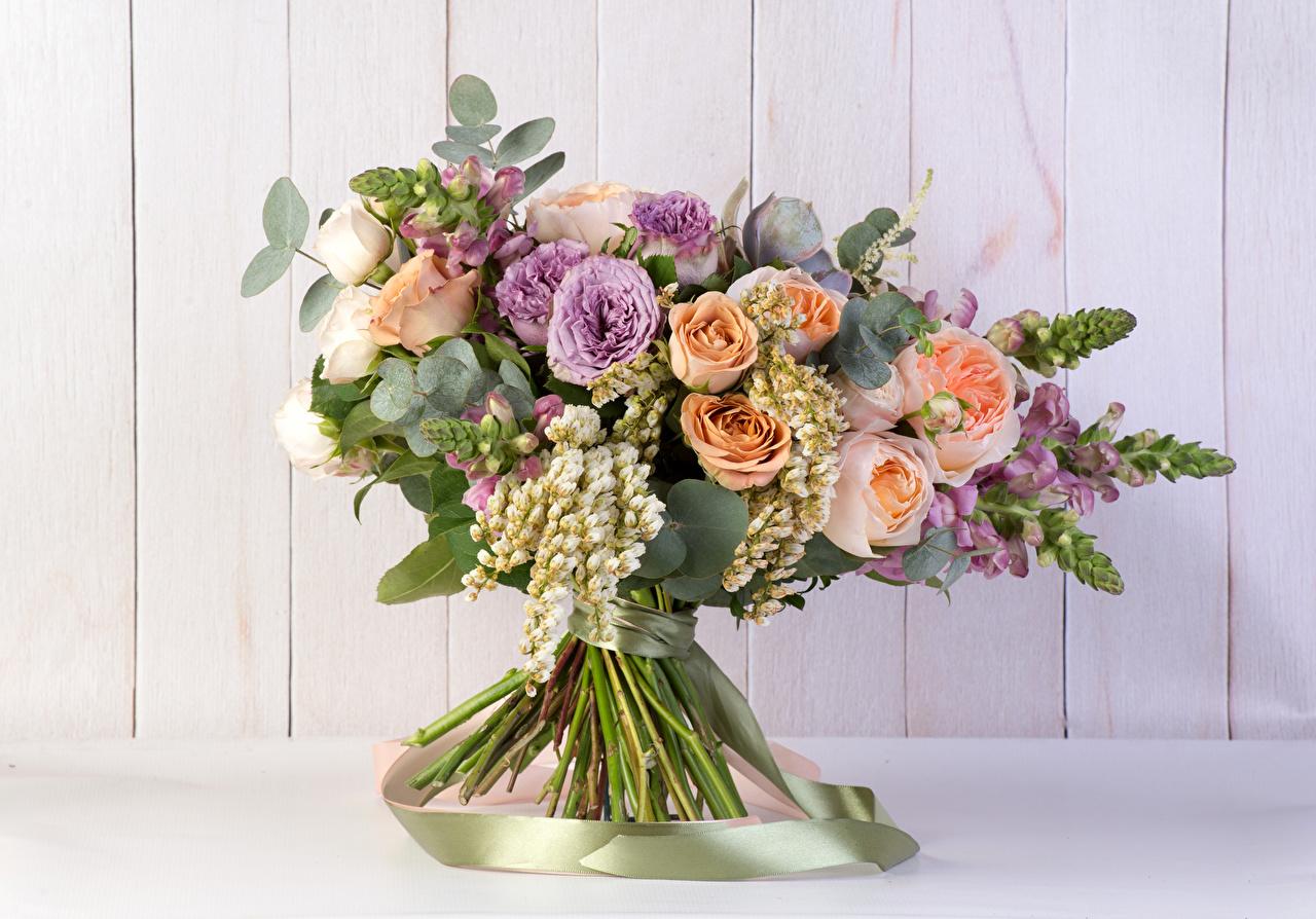 Картинки Букеты Розы цветок Львиный зев Доски букет роза Цветы Антирринум