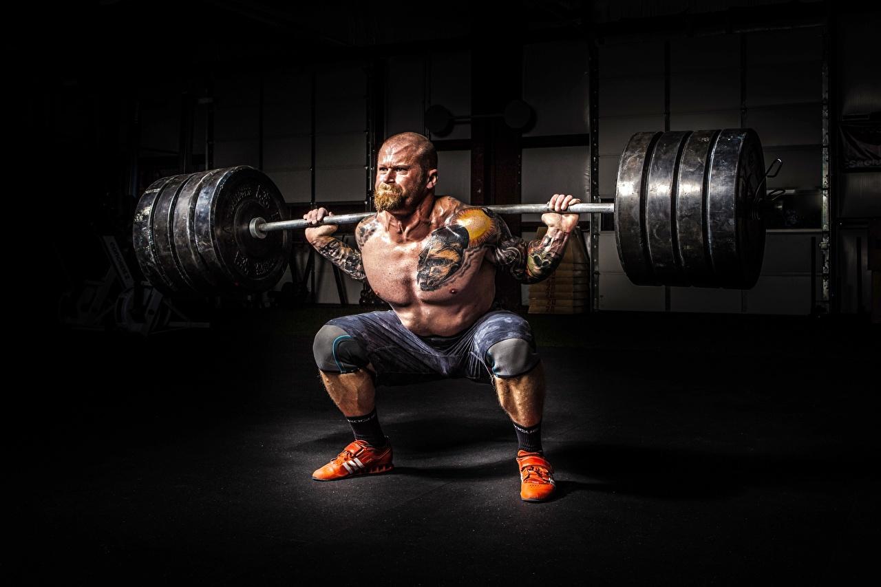 Фотографии Татуировки Мышцы Мужчины Лысый Борода Спорт Штанга Бодибилдинг тату мускулы