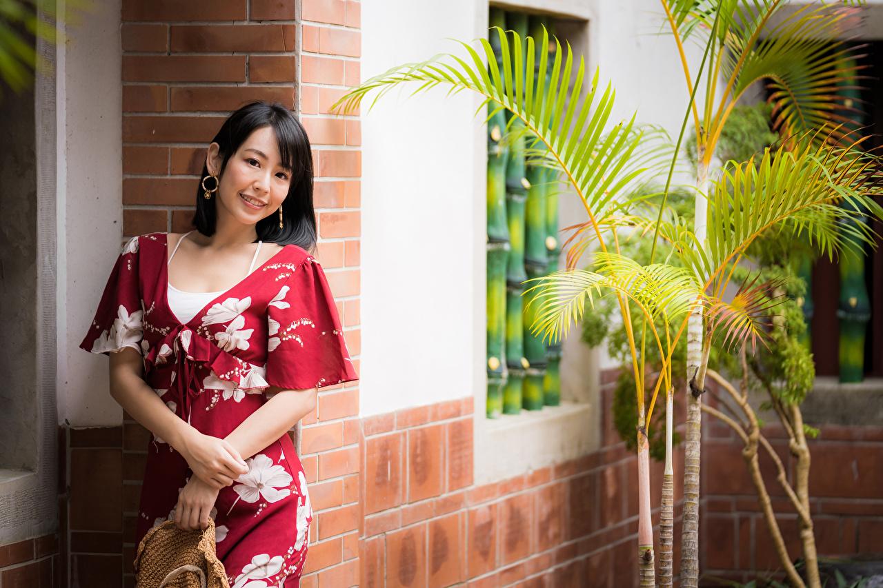 Картинка брюнетки улыбается девушка азиатки Взгляд Платье Брюнетка брюнеток Улыбка Девушки молодая женщина молодые женщины Азиаты азиатка смотрит смотрят платья